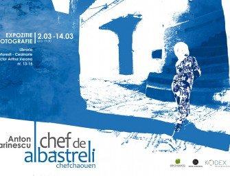 Chef de albastreli – expoziție de fotografie